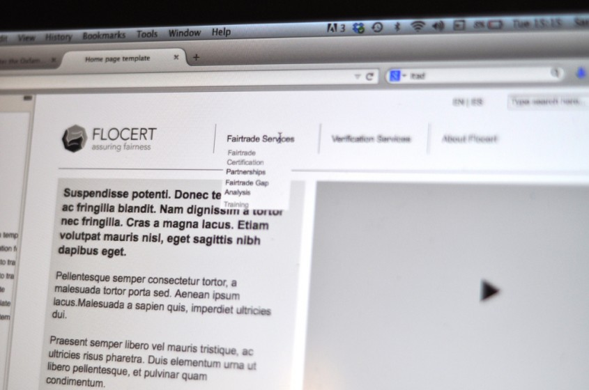 Flocert website wireframe design