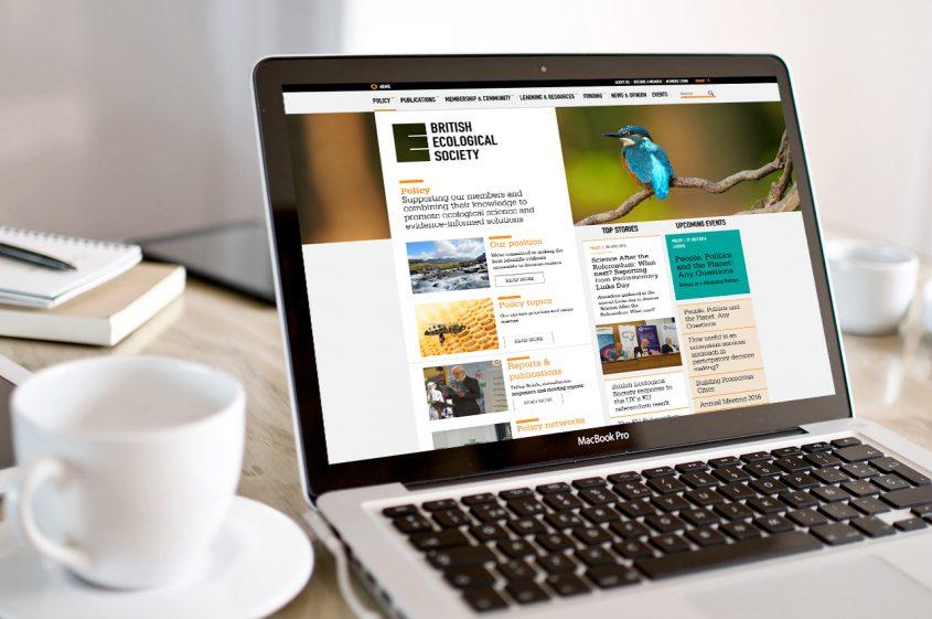 BES website UI design for a hub page