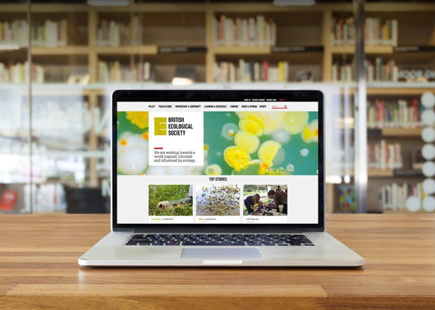 BES homepage design